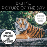 Digital Picture of the Day - Animal Similarities and Differences