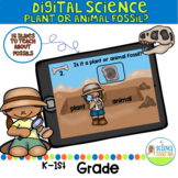Digital Plant and Animal Fossils Science Pack