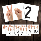 Digital Printable - Matching & Counting - Numbers and Hands