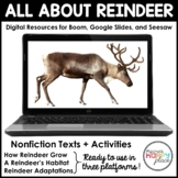 Digital Reindeer Activities - Boom, Seesaw, & Google Slide