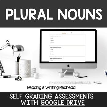 Digital Self Grading Plural Nouns  Assessments for Google Drive