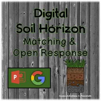 Digital Soil Horizon