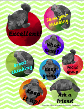 Digital Stickers for Assessment with Manatees