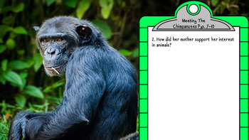 Digital The Chimpanzees I Love Discussion Questions and Answers