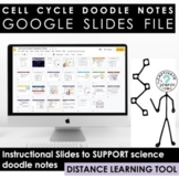 Digital Tools for Cell Cycle Doodle Notes