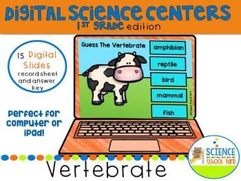 Digital Vertebrate Review and Assessment