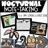 Digital and Printable: Nocturnal Animal Directed Drawings