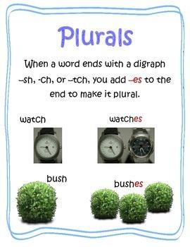 Digraph Plurals -tch  -ch  -sh