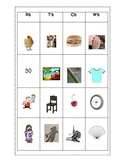 Digraph Word Sort + Activities: Sh, Th, Ch, Ph