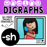 Ending Digraphs SH Phonics Printables for Kindergarten and First Grade