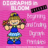 Digraphs FREEBIE! | Printables