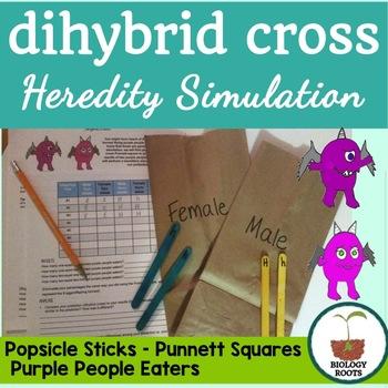 Dihybrid Cross Activity- Heredity Simulation