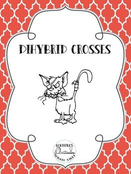Dihybrid Cross Practice