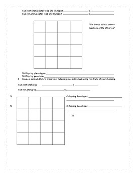 Dihybrid Cross Punnett Practice Worksheet by Science with ...