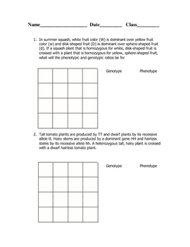 Dihybrid Cross Worksheet by Goby's Lessons | Teachers Pay Teachers