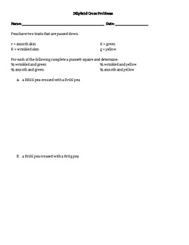 Dihybrid Cross Worksheet Dihybrid Cross Worksheet