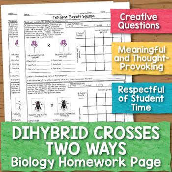 Dihybrid Crosses Biology Homework Worksheet