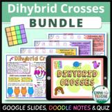 Dihybrid Crosses Bundle - Google Slides, Quiz and Doodle Notes