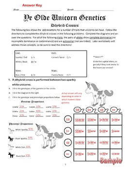 Dihybrid Crosses (F1 Dihybrid Cross Worksheet) by Cynthia Dickerson