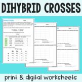 Dihybrid Crosses - Practice Worksheet