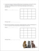 Dihybrid Crosses Punnet Square Practice