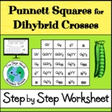 Punnett Squares for Dihybrid Crosses - Step by Step Worksheet