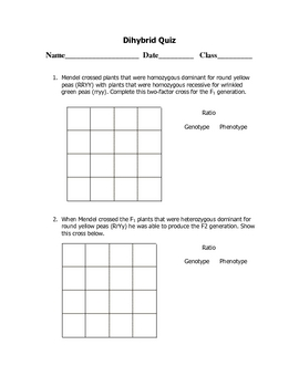 Dihybrid Punnett Square Quiz by Goby's Lessons | TpT