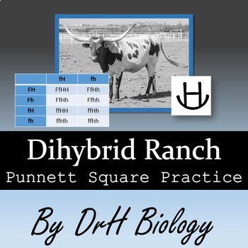 Genetics: Dihybrid Ranch Punnett Square