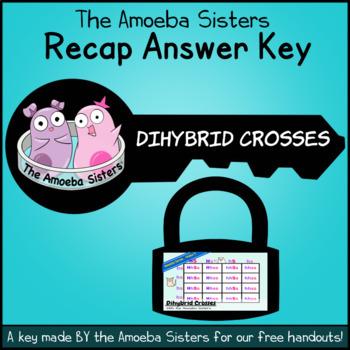 Dihybrid Recap Answer Key by The Amoeba Sisters (Dihybrid Cross Answer Key)