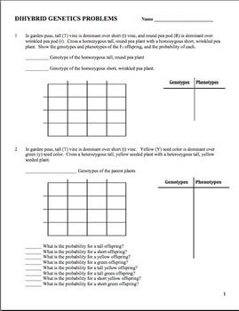 Genetics: Dihybrid (Two Factor) Practice Problem Worksheet | TpT