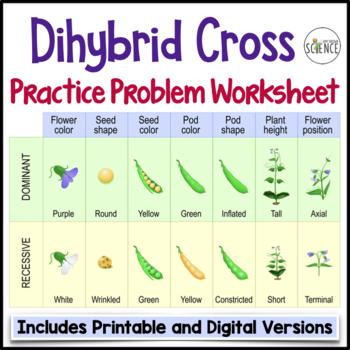 Genetics: Dihybrid Cross Worksheet by Amy Brown Science | TpT