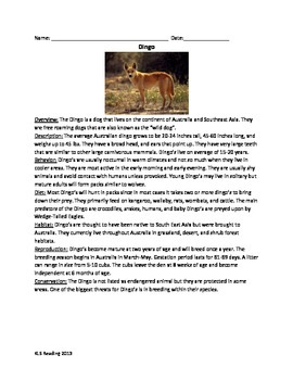 Dingo - Review Article Facts Information Questions Vocabul