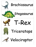 Dino Word Wall Flash cards