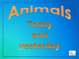 Dinos and our animals today