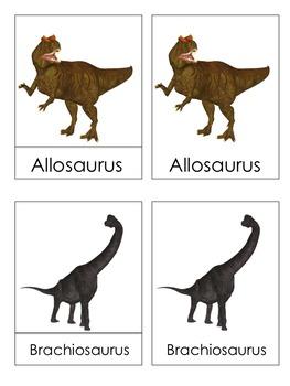 Dinosaur 3 Part Cards