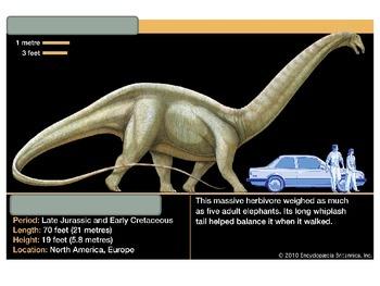 Ancient History- Dinosaur Activity
