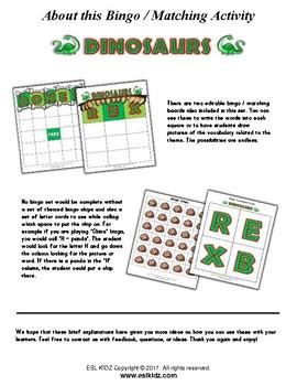 Dinosaur Bingo / Matching Activities