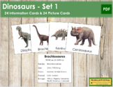 Dinosaur Cards (Set #1) - Information Cards & Picture Cards