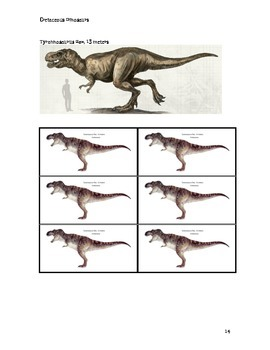Dinosaur Cards to Find the Mean,Median and Mode
