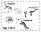 Dinosaur Dig FREE Example-MidnightStar