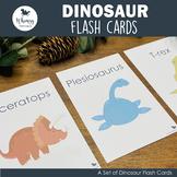 Dinosaur Dig Flash Cards