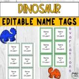 Dinosaur Editable Printable Name Tags 3.5x3.5 for PreK Preschool