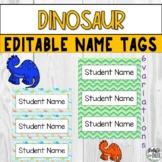 Dinosaur Editable Printable Table Name Tags for Preschool