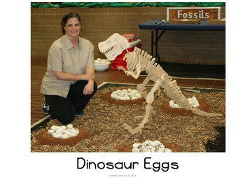 Dinosaur Eggs Powerpoint Presentation