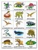 Dinosaur Flashcards Theme Words Poster Vocabulary Pictionary