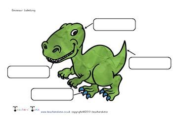 Dinosaur Labelling