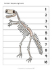 Dinosaur Math Pack - Numbers, Counting, Sorting, Ordering,
