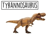 Dinosaur Picture and Name