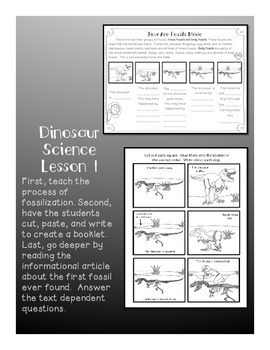 Dinosaur Science - How are fossils made and who found the first fossil?