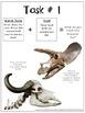 Dinosaur Science - Paleontologists Hypothesize